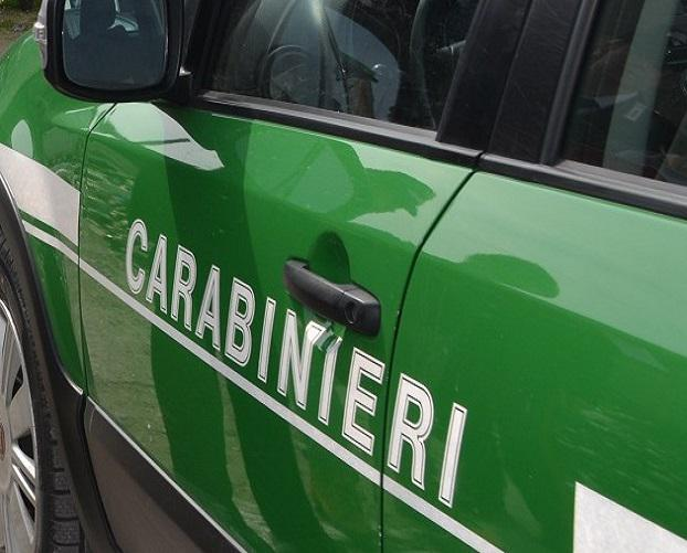 Lo spacciavano per Parmigiano, era formaggio di scarto. I Carabinieri Forestali sequestrano alimenti in supermercato a Serracapriola
