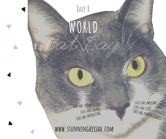 Happy World Cat Day from Facebooklandia
