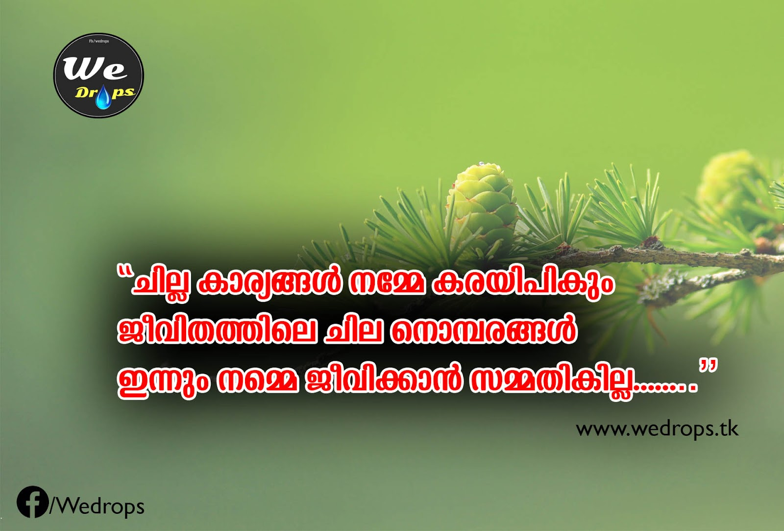 Malayalam Love Quotes Wallpaperhawk