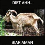 Meme Kambing Kurban Idul Adha