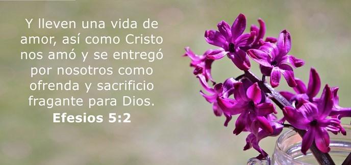 Y lleven una vida de amor, así como Cristo nos amó y se entregó por nosotros como ofrenda y sacrificio fragante para Dios.