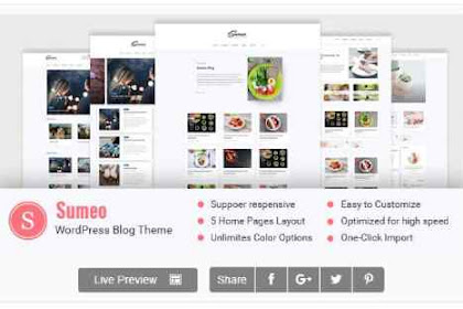 Download Sumeo - Blog WordPress Themes Features