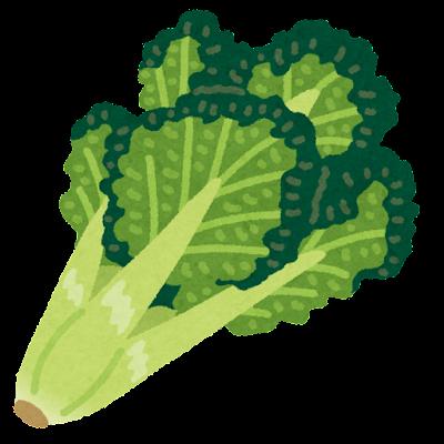 ちぢみ雪菜のイラスト