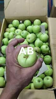 jual apel malang di medan
