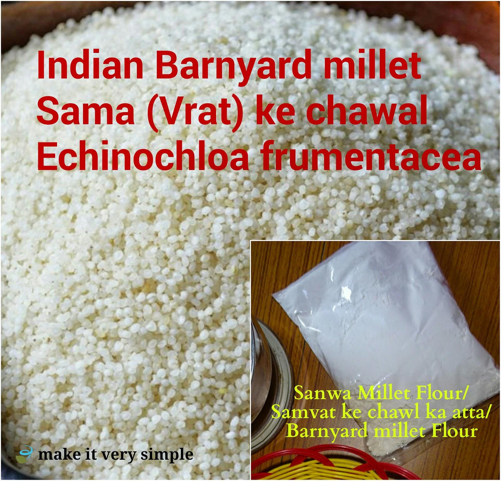 Veg Indian Good Food Recipes Ekadashi Fasting Food Sanwa Ke Attey Ka Aloo Paratha Sama