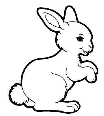 Gambar mewarnai kelinci - 3
