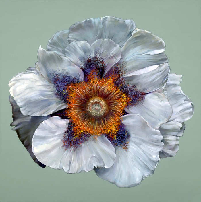 Рисунки цветов. Carmelo Blandino 19