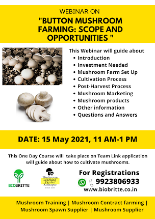 Button Mushroom FARMING: SCOPE AND OPPORTUNITIES
