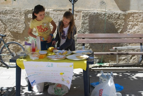 lemonade stand-raising financially smart kids