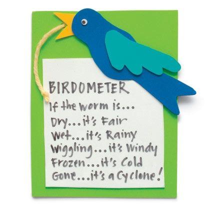 Crafts: Birdometer