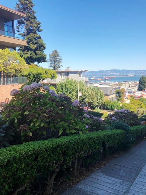 balade sur Lombard Street San Francisco