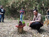 Bunga Bangkai Tumbuh di Pekarangan Rumah Warga Winong Pati
