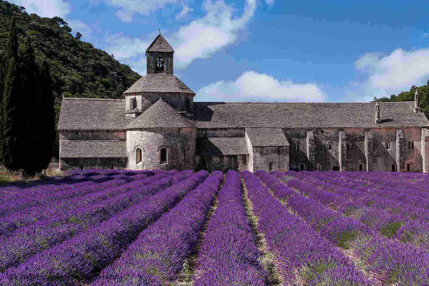 senanque abbey and lavender fields - best things to do in provence, france
