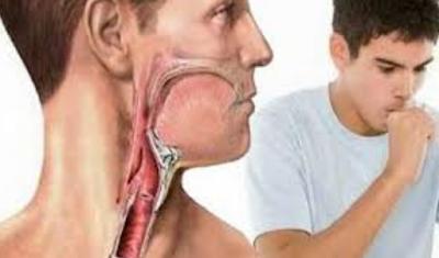 Obat Batuk Di Sertai Pilek Dan Flu Secara Herbal