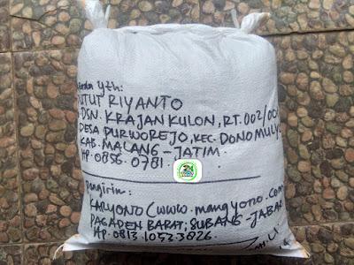 Benih Padi Pesanan  PUTUT RIYANTO Malang, Jatim.   (Setelah di Packing).