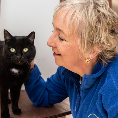 Cats Protection volunteer stroking black cat