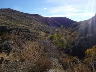 Valle del río Cañamares