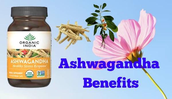Top 10 Health Benefits Of Taking Ashwagandha Powder In Hindi