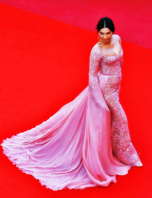 Cannes Red Carpet 2017 Sonam Kapoor beauty looks stunning Images