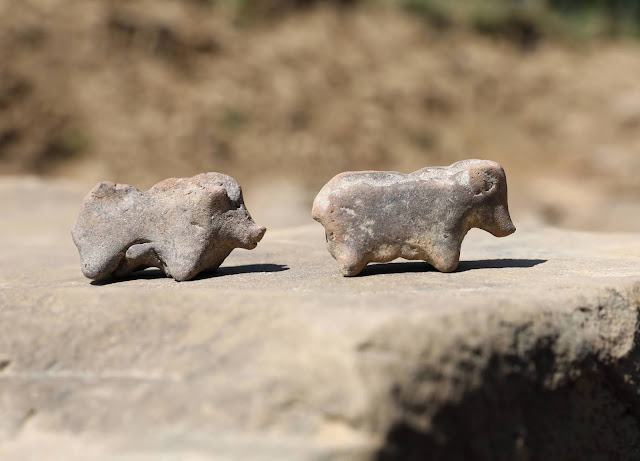Rare pig figurines found in Bronze Age house in southern Poland
