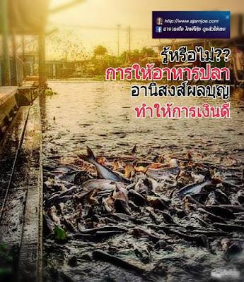 ลี่เจียง เมืองเก่ามรดกโลก