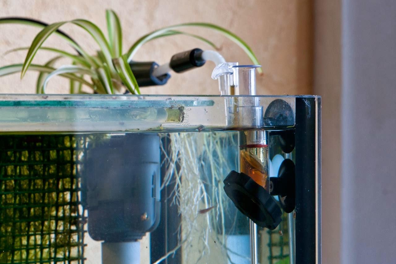 zoo zajac 39 s aquaristik blog produktvorstellung dennerle dosator d ngerautomat. Black Bedroom Furniture Sets. Home Design Ideas