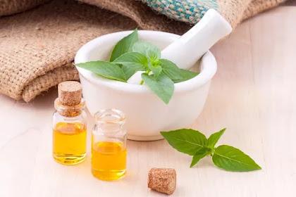 Manfaat 3 Daun Sebagai Obat Herbal/Alami Yang Manjur