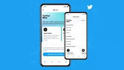 Layanan Twitter Blue Resmi Meluncur, Apa saja Fitur yang Ditawarkannya?