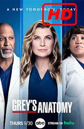 Greys Anatomy Temporada 18 Full HD capitulo 4