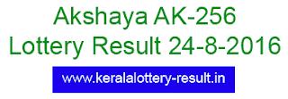 Akshaya ak 256, Kerala Lottery Result Akshaya AK256, Today 24-8-2016 Akshaya AK-256, lottery result Akshaya AK-256 today 24/08/2016