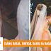 Isang Kasal Napatigil Matapos Lumingon ang Bride at Nakita ang Bagay na Ito!