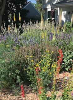 A mixed native and non-native planting