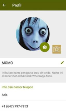 nomor asli wa momo whatsapp meksiko