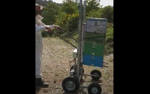 Ηλεκτρικό καρότσι αναβατόριο για τρύγους και φόρτωμα Video