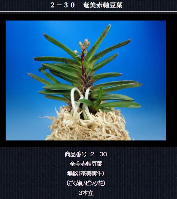 http://www.fuuran.jp/2-30html