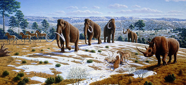 Did an extraterrestrial impact trigger the extinction of ice-age animals?