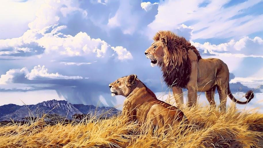 Lion, Lioness, 4K, 3840x2160, #46