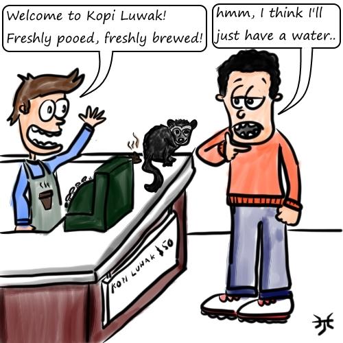 Kopi Luwak, coffee poo