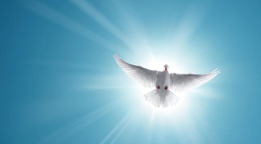 https://www.saintmaximeantony.org/2019/05/parcours-effusion-de-lesprit.html