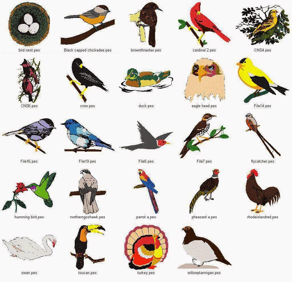 Ideas For Early Childhood Ideas For A Preschool Bird Theme