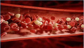 Benefits of Artificial Red Platelets