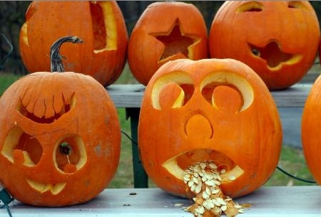 Wild Birds Unlimited: The origin of pumpkins and Jack O ...