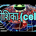 What is cell ? कोशिका की खोज, आकार,आकृति Discovery, Shape,Size of cell, Cell Information In Hindi