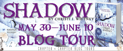 http://www.chapter-by-chapter.com/blog-tour-schedule-shadow-the-romany-outcasts-2-by-christi-j-whitney/