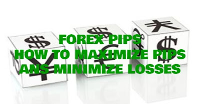 How To Maximize Pips And Minimize Losses, Forex Pips. Forex, Forex Blog,  Forex Friend Loan, Pips, Trading Tips, Profits, Losses, Trading