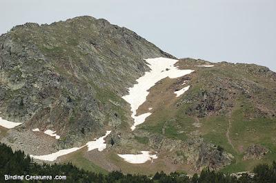Restes de neu a les muntanyes properes