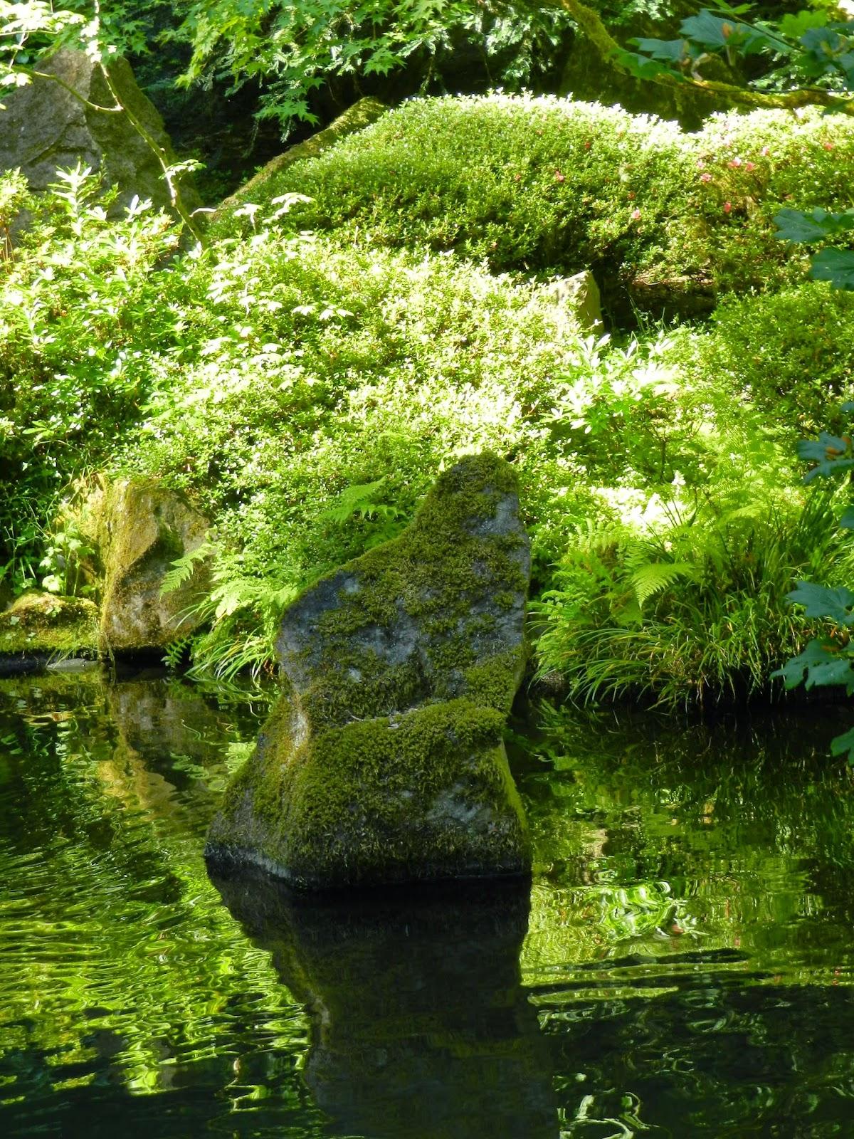 Portland Japanese Garden Store: Prairie Rose's Garden: The Many Faces Of Portland--Part I