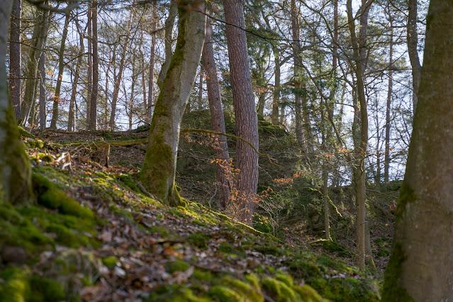 Eschbacher Klippen und Maibacher Schweiz | Wanderung rund um Michelbach im Taunus 27