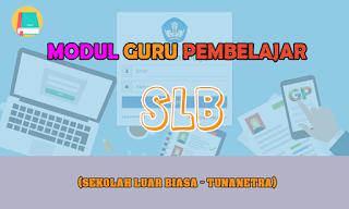 Download Modul Guru Pembelajar SLB