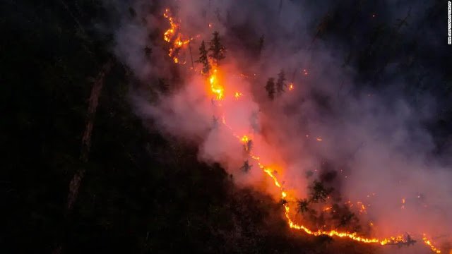 Forest fire in Yakutia seen from above. Photo: AP